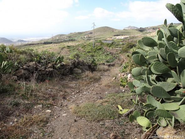 Charco del Pino - Camino Real del Sur - Tenerife
