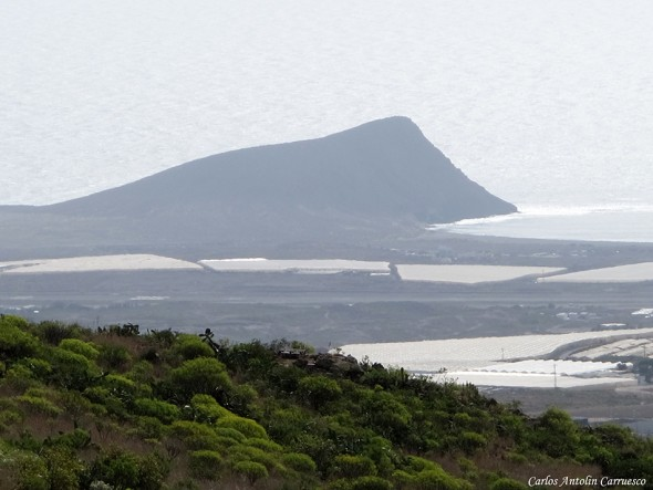 El Médano - Montaña Roja - Tenerife - san miguel de abona