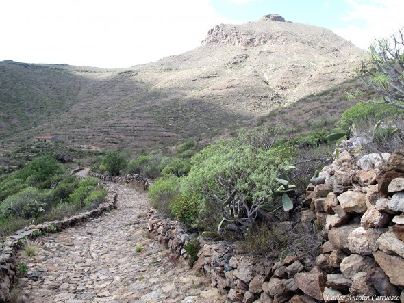 Roque de Jama - Camino Real del Sur - Tenerife