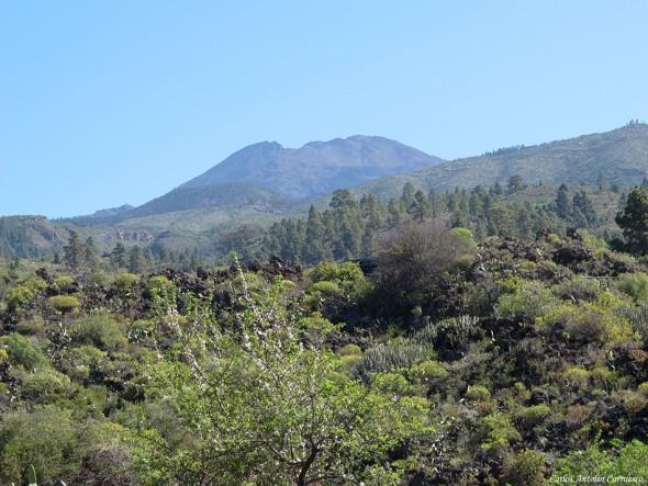 Guía de Isora - Tenerife - Pico Viejo en el horizonte