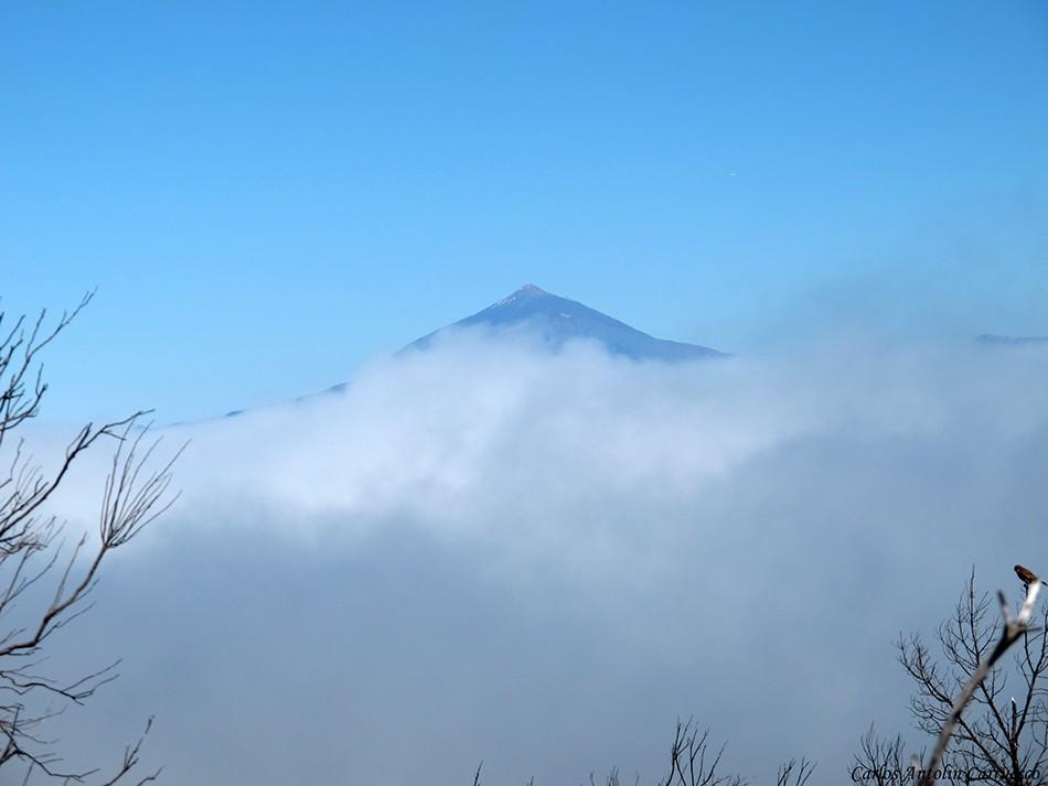 Parque Nacional de Garajonay - La Gomera - teide