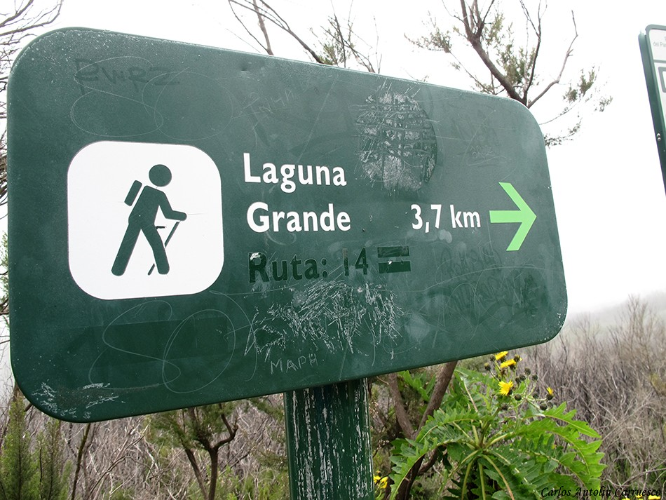 Parque Nacional de la Gomera - La Gomera