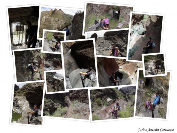 www.wildcanarias.com
