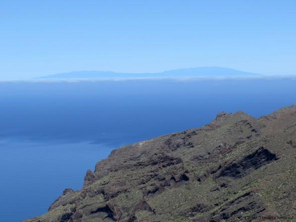 Abache - Parque Rural de Teno - Tenerife - la palma