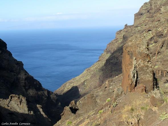 Los Carrizales - Teno - Tenerife7