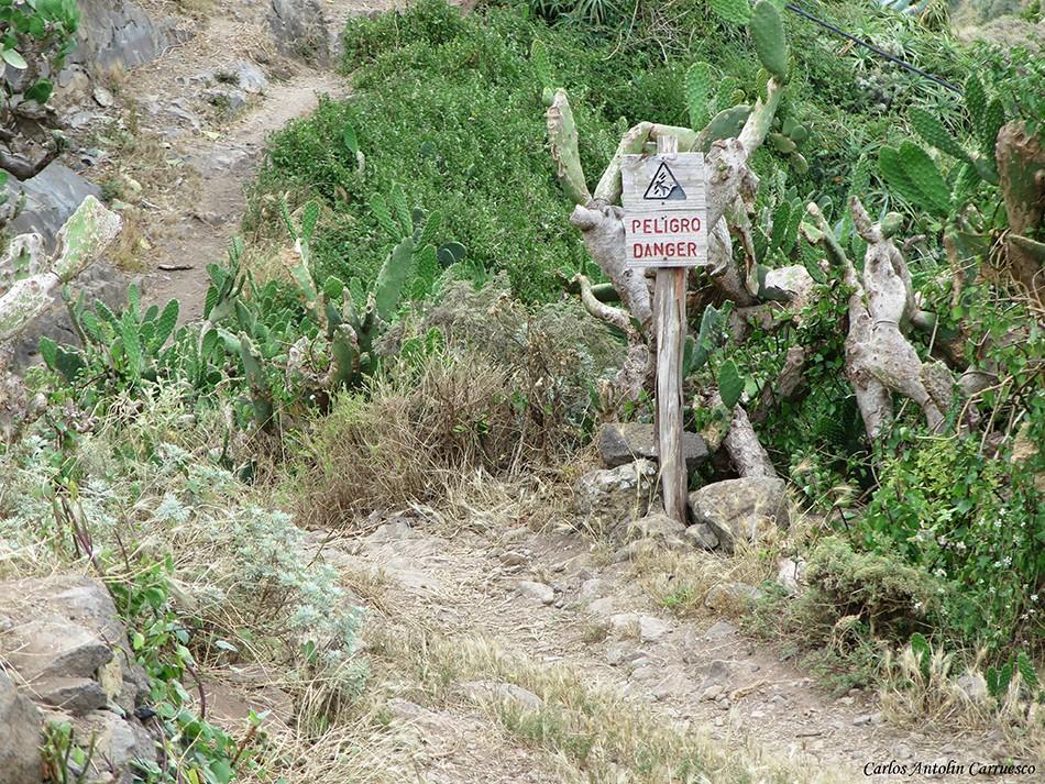 Sendero de Palo Hincado - conduce hasta la misma playa de Tamadiste