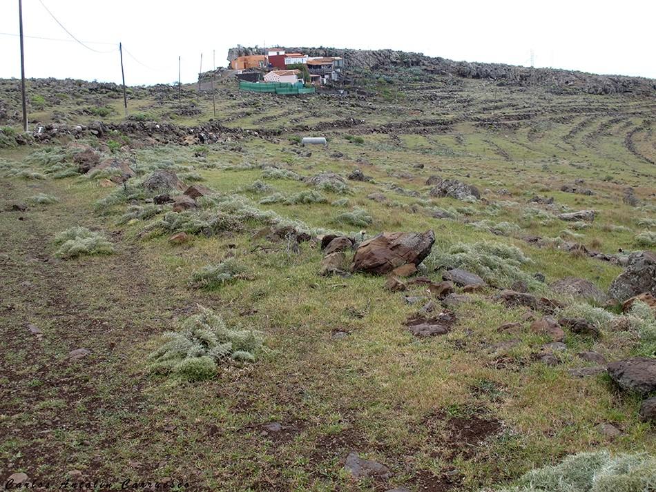Ayamosna - GR131 - La Gomera