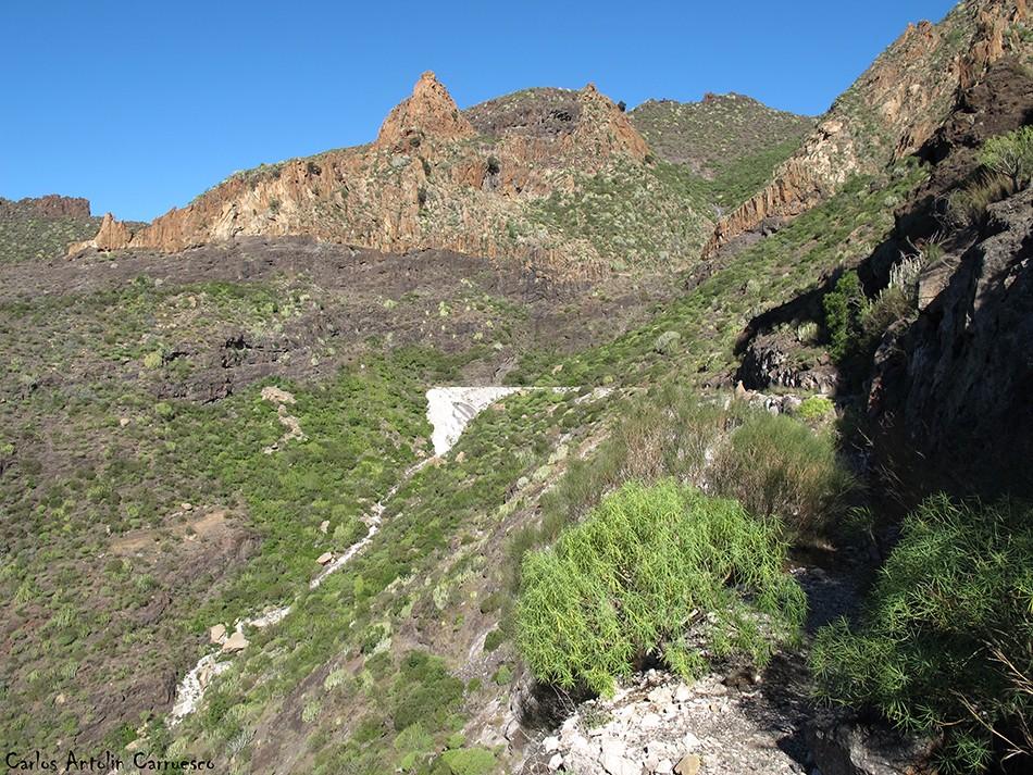 Barranco Seco - Tajea o Atarjea del Sauce - Tenerife