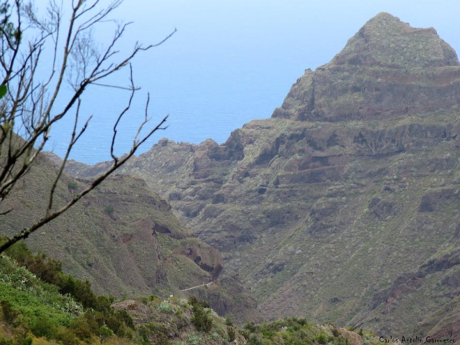 Canal de Bejía - Anaga - Tenerife