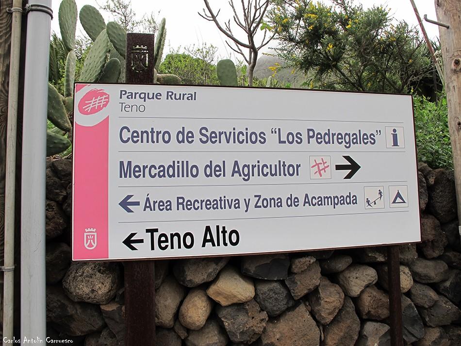 El Palmar - Teno - Tenerife - los pedregales