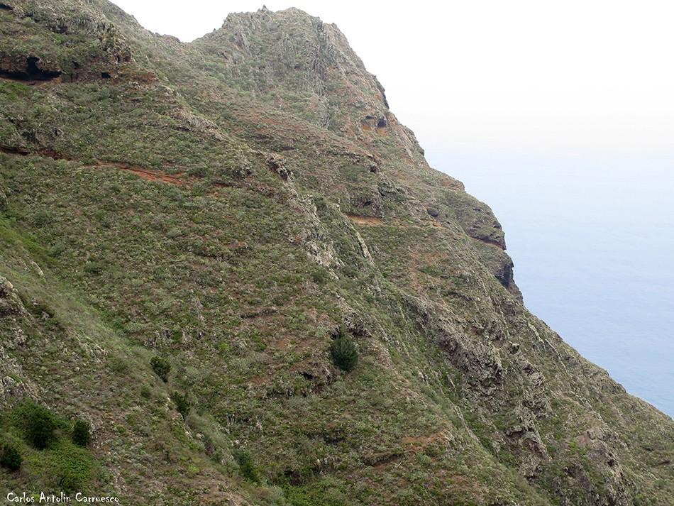La Angostura - Anaga - Tenerife - la veta de los guirres