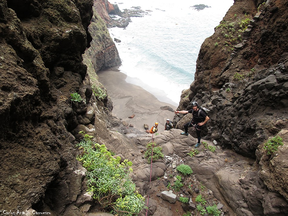 La Angostura - Anaga - Tenerife - pachila
