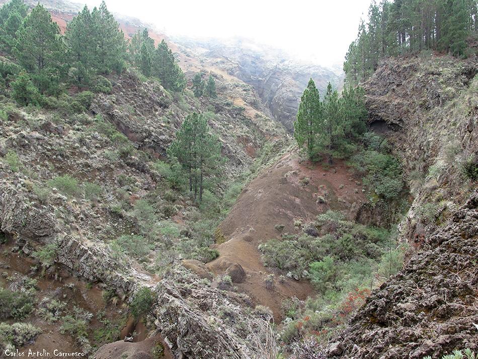 Los Arcos - Corona Forestal - Tenerife