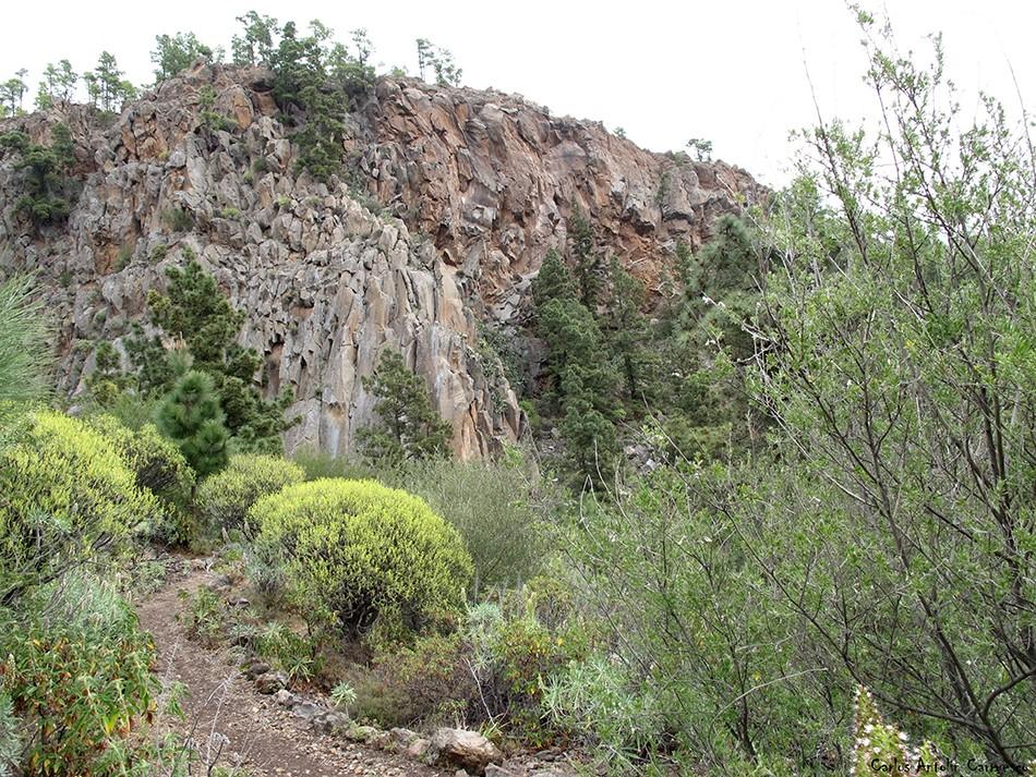 Risco del Muerto - Granadilla de Abona - Tenerife