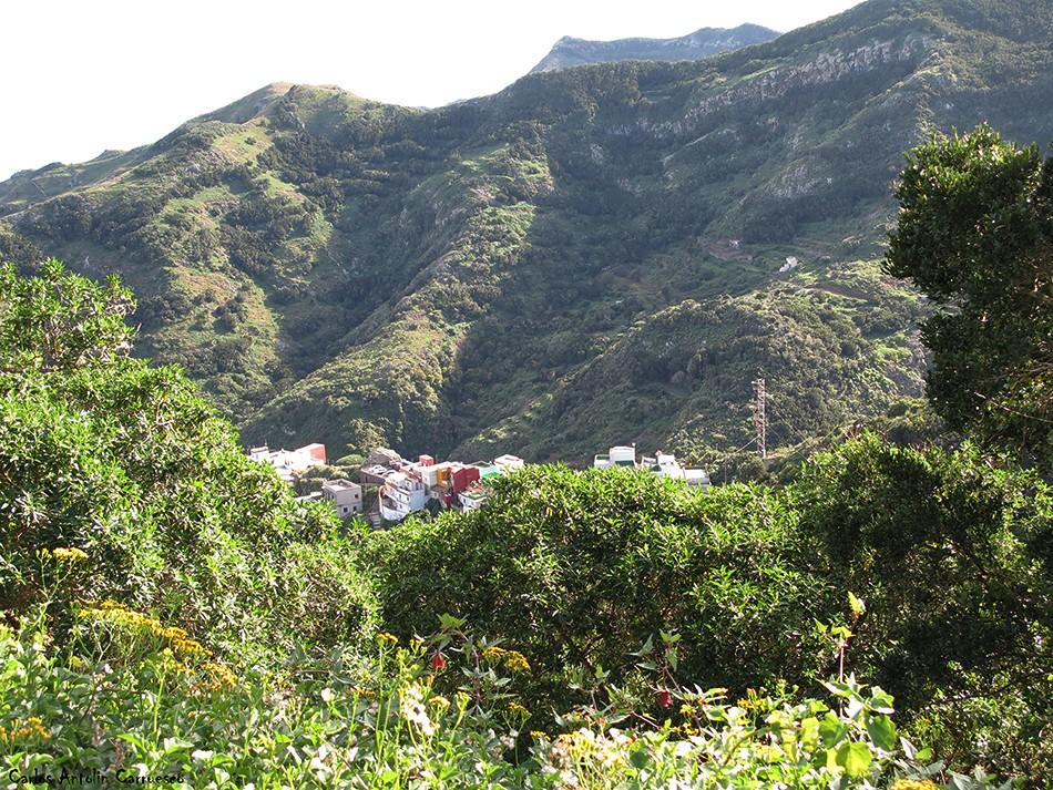 Lomo de Las Bodegas desde La Cumbrilla - Anaga - Tenerife
