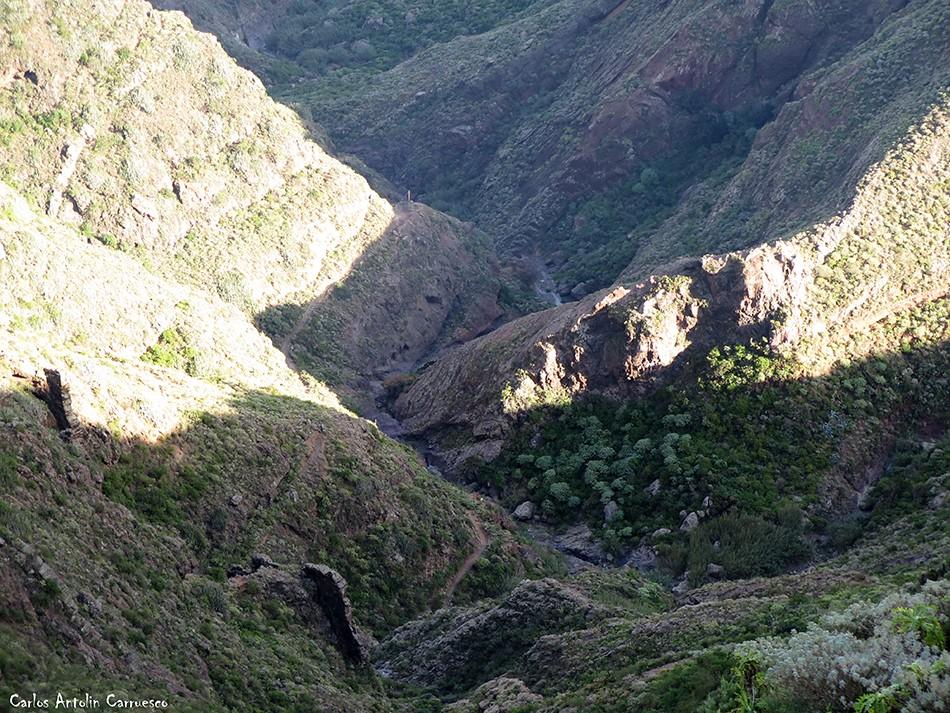 Barranco Roque Bermejo - Anaga - Tenerife
