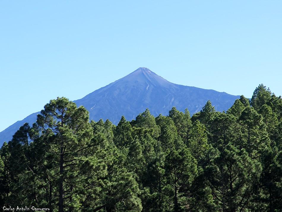 Corona Forestal - Garachico - Tenerife - Teide