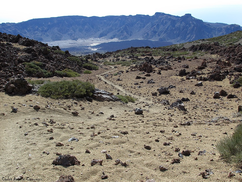 Regatones Negros - Ultra Bluetrail - Tenerife - Parque Nacional del Teide - sendero Nº 23 - cumbres de ucanca
