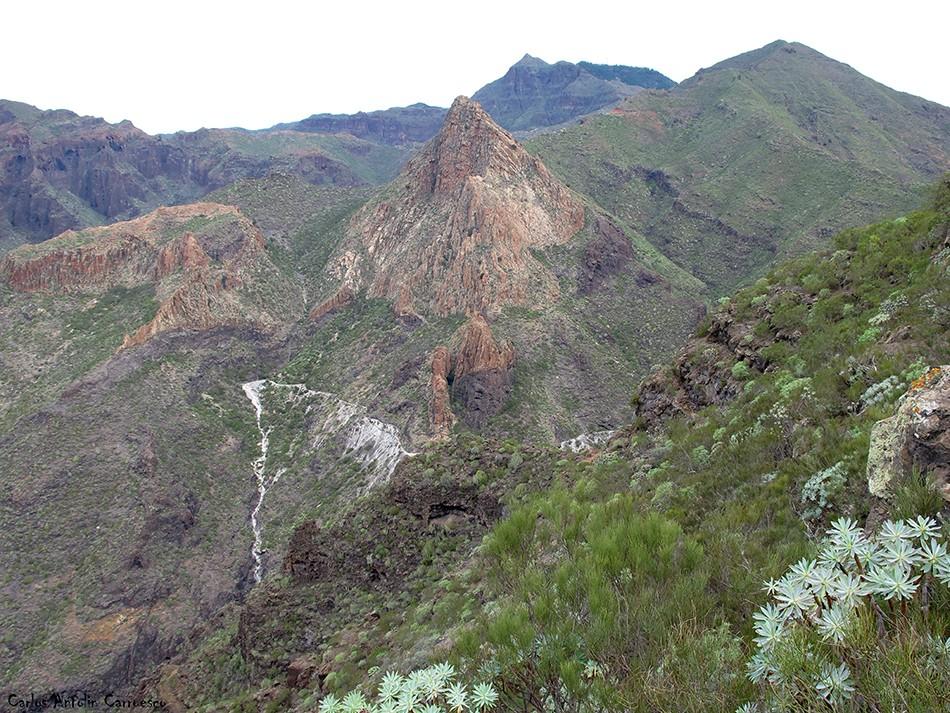 Parque Rural de Teno - Risco Blanco - Tenerife