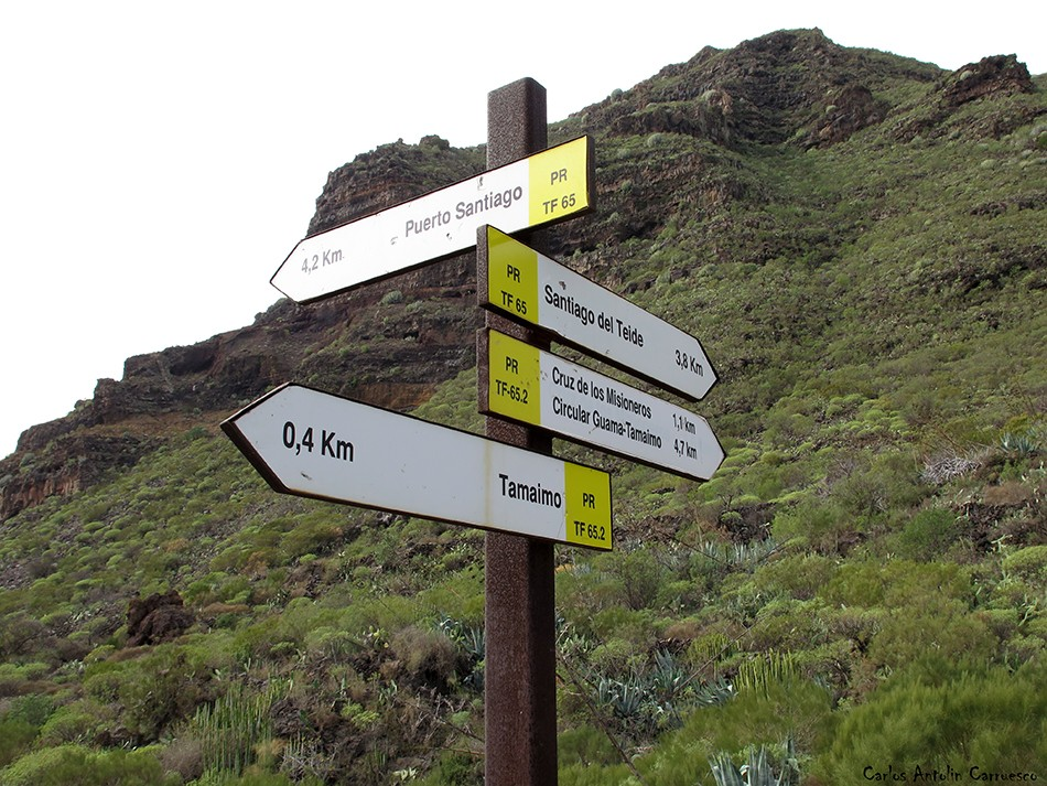 Tamaimo - Teno - Tenerife - guama
