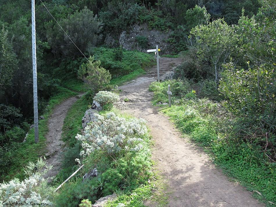Degollada de Las Escaleras - Anaga - Tenerife