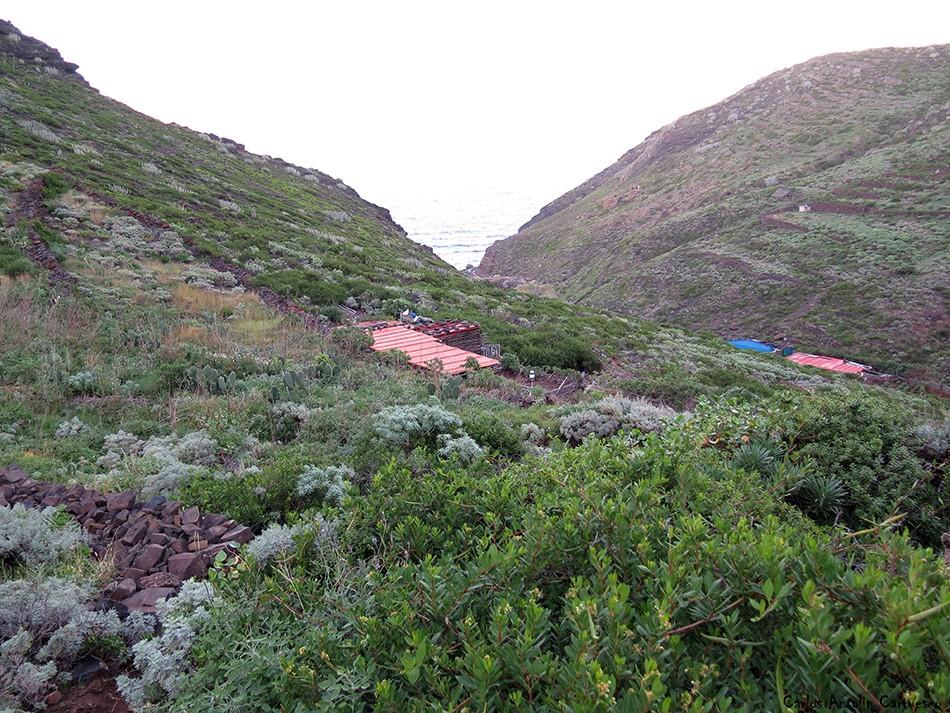 Palo Hincado - Anaga - Tenerife - Playa de Tamadiste