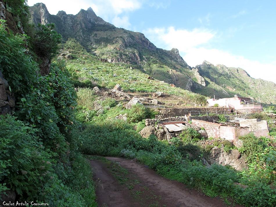 Los Auchones - Los Chorros - Anaga - Tenerife