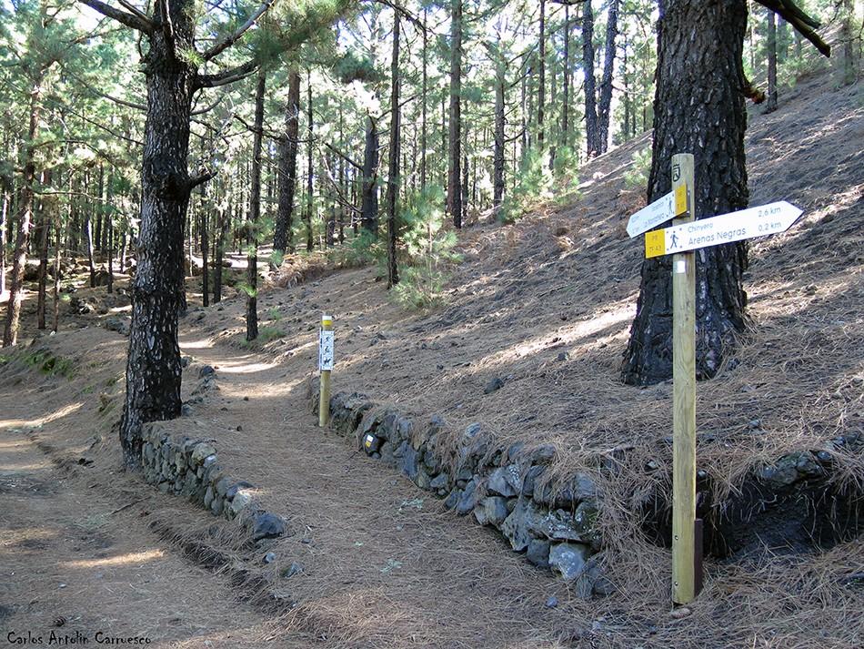 Garachico - Corona Forestal - Tenerife - Área Recreativa de Arenas Negras