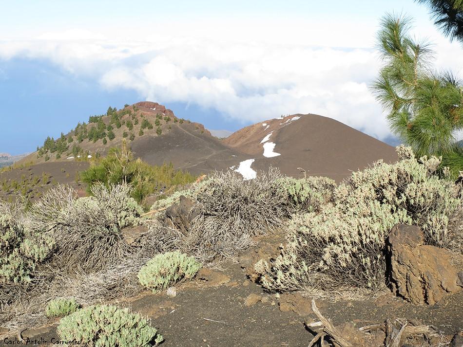 Samara - Parque Nacional del Teide - Tenerife