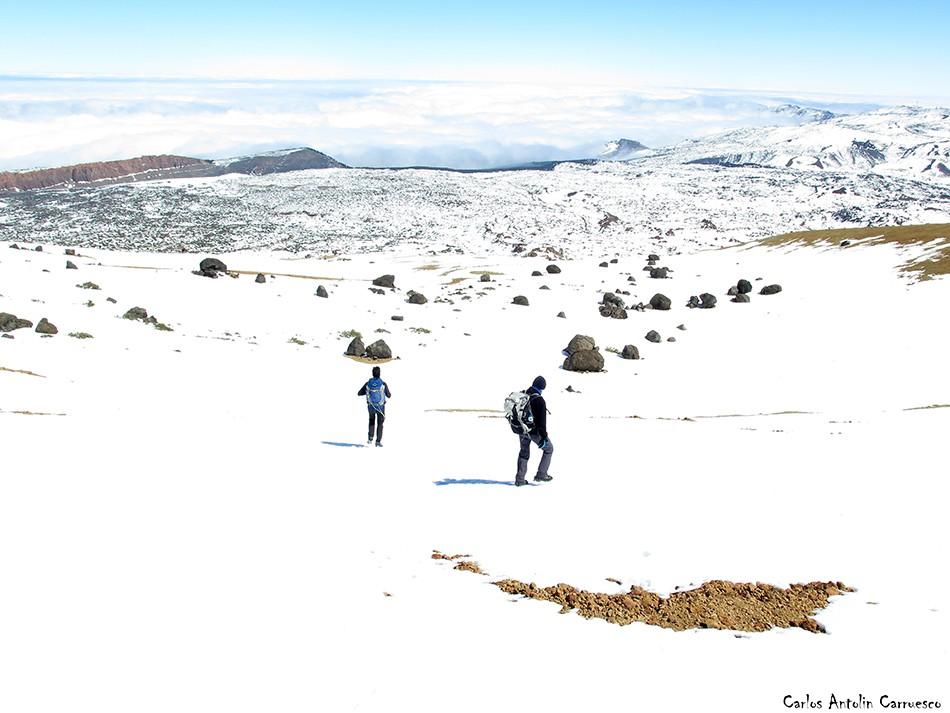 Montaña Blanca - Teide - Tenerife - huevos del teide