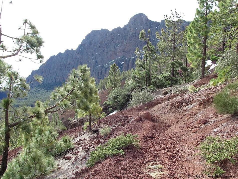 Caldera de Pedro Gil - Cho Marcial - Tenerife