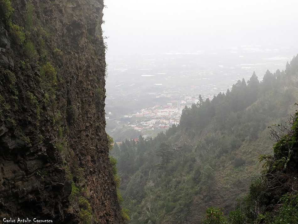 Las Gambuesas - Tenerife - arafo