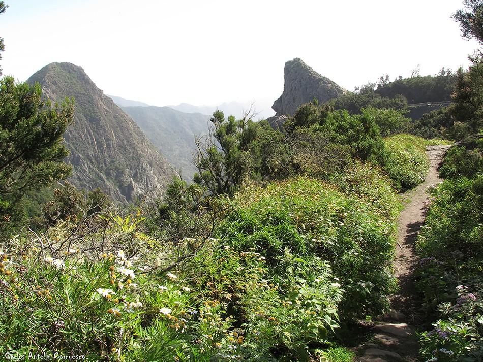 Roque de Ojila - Roque de Las Lajas - GR131 - La Gomera