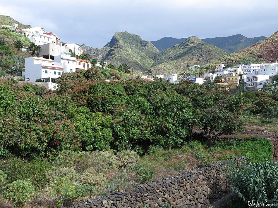 Igueste de San Andrés - Tenerife