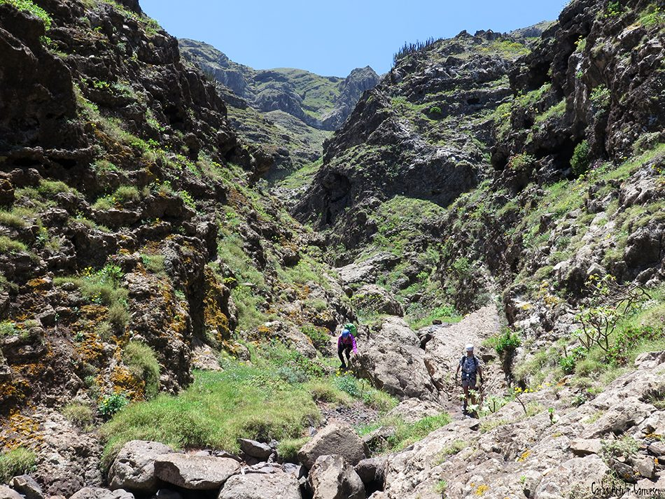 Barranco de Ajoque - Tenerife