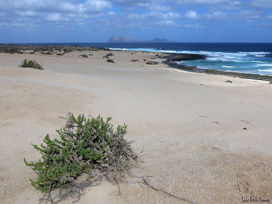 Isla de La Graciosa - Playa Lambra - Lanzarote - alegranza