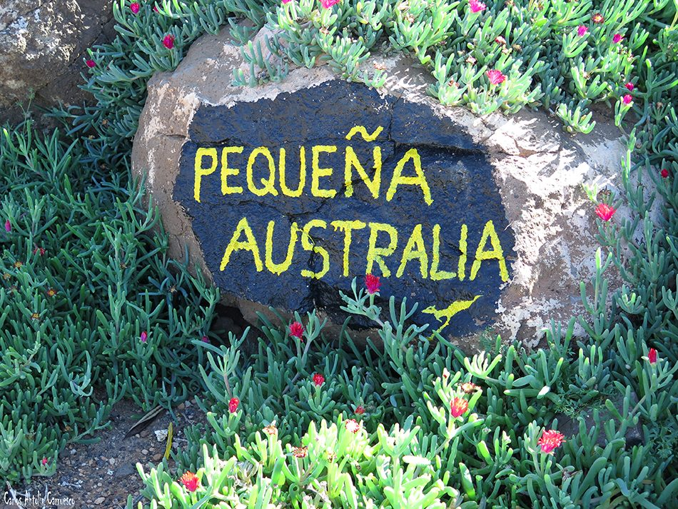 Barranco de La Paja - Famara - Lanzarote - finca pequeña australia