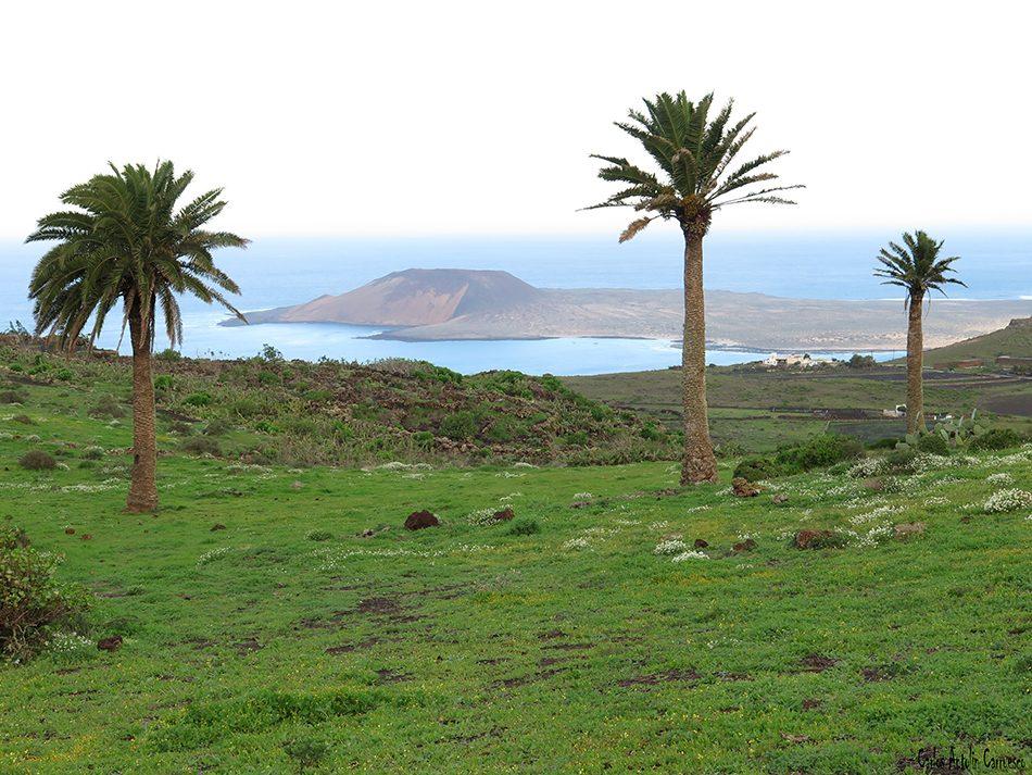 Guinate - Camino de Gayo - Lanzarote - la graciosa - montaña amarilla