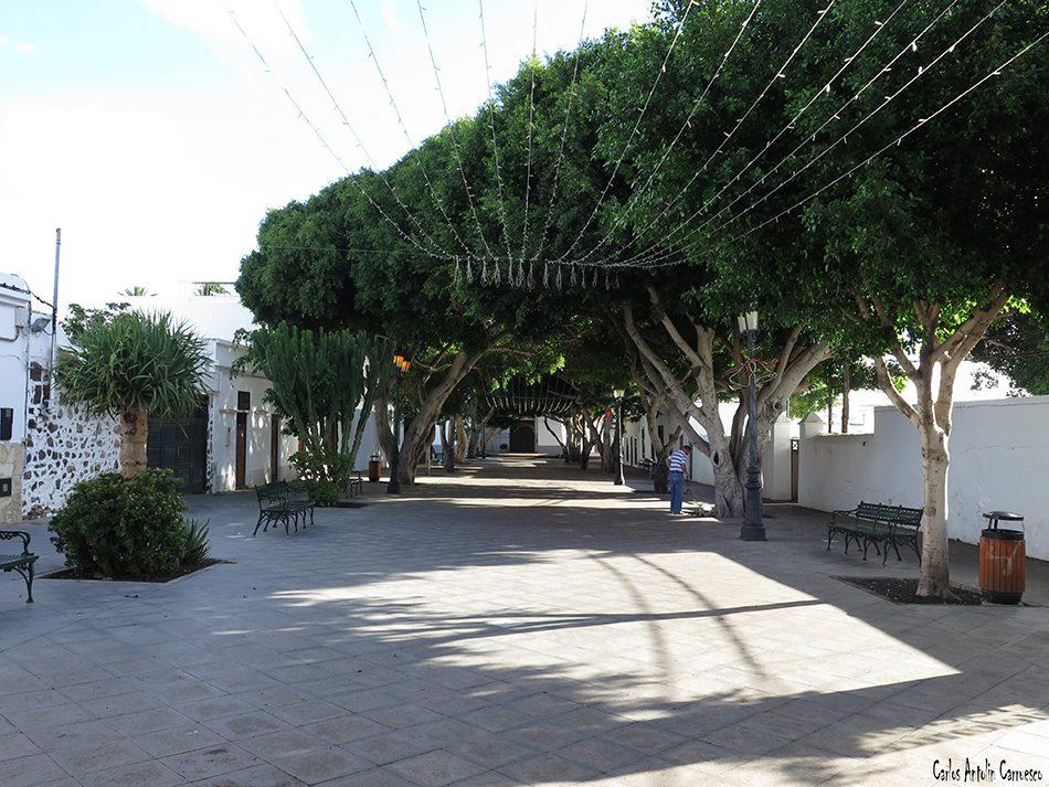 Haría - Lanzarote
