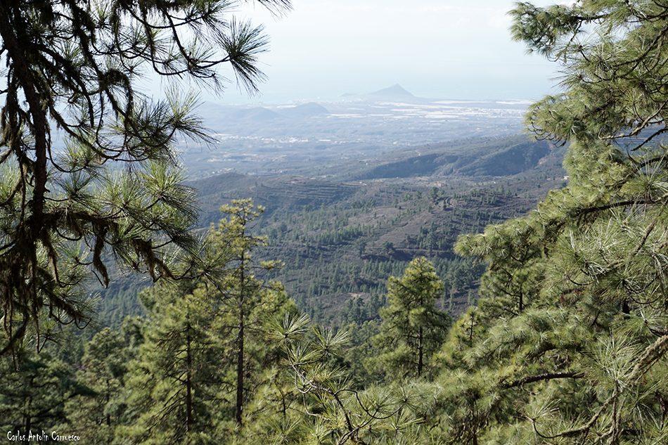 Cumbres de Arico - Tenerife