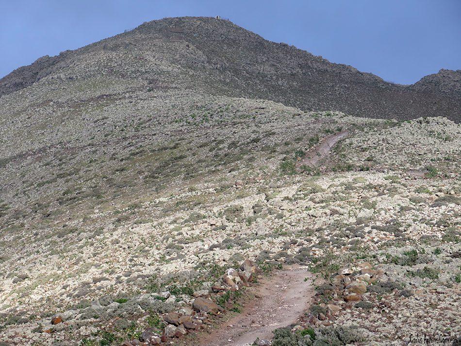 Pico de La Zarza - Jandia - Fuerteventura