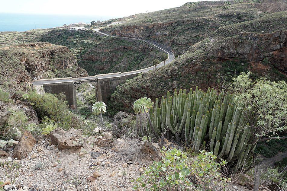 Archifira - Tenerife
