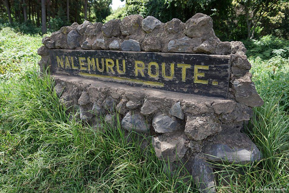 Nale Muru - Puerta Rongai - Tanzania - Monte Kilimanjaro