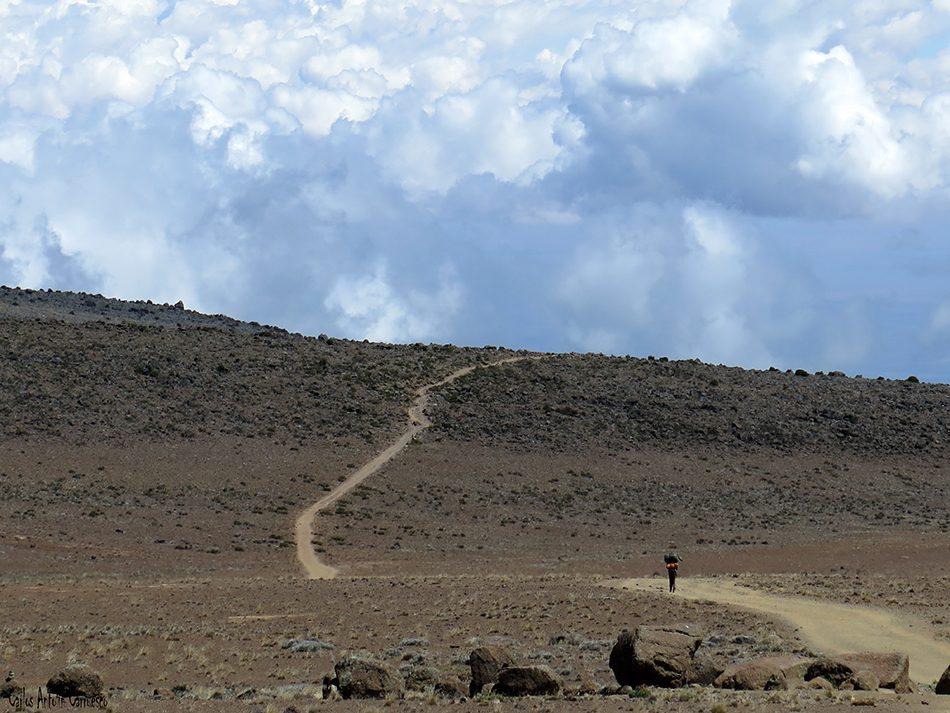 Kilimanjaro - Tanzania