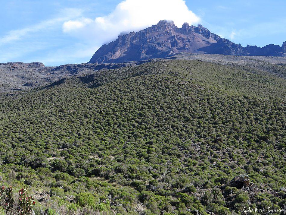 Marangu - Kilimanjaro - Tanzania - Horombo Hut - Volcán Mawenzi