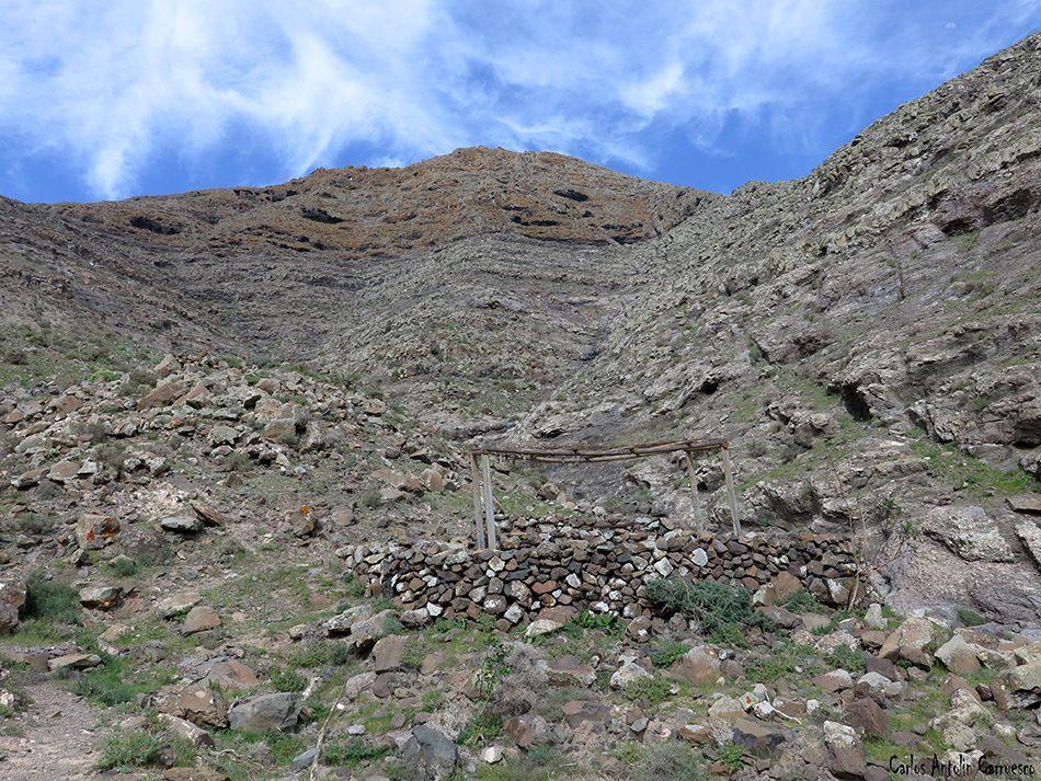 La Matilla - Espigón de la Mesa - Fuerteventura - gambuesa