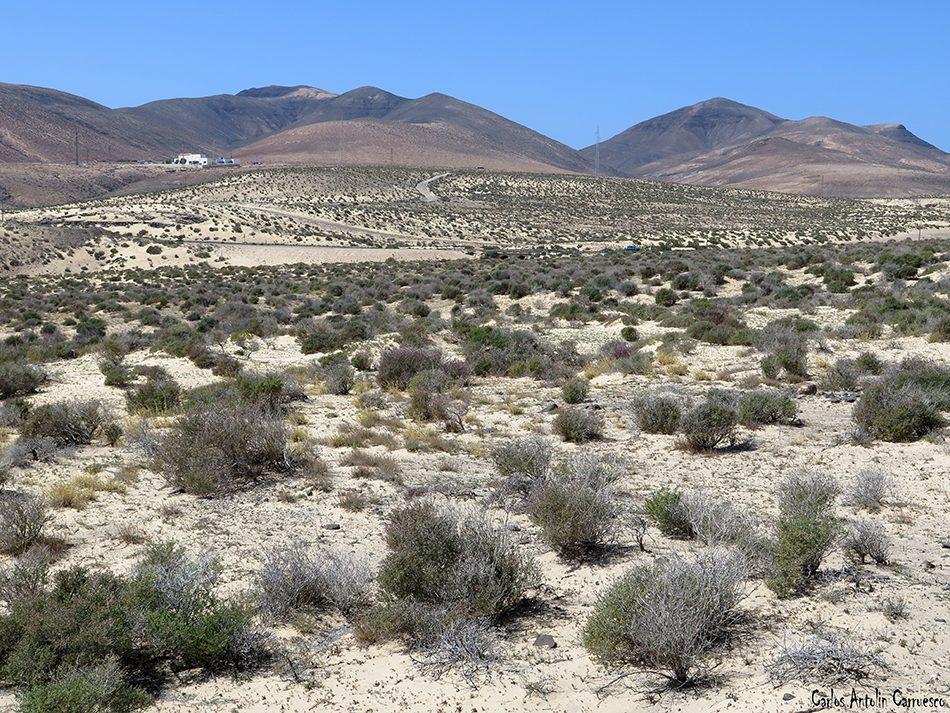 Barranco y Casas de Pecenescal - Fuerteventura - Parque Natural de Jandía