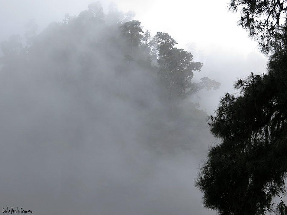 Marcos y Cordero - La Palma