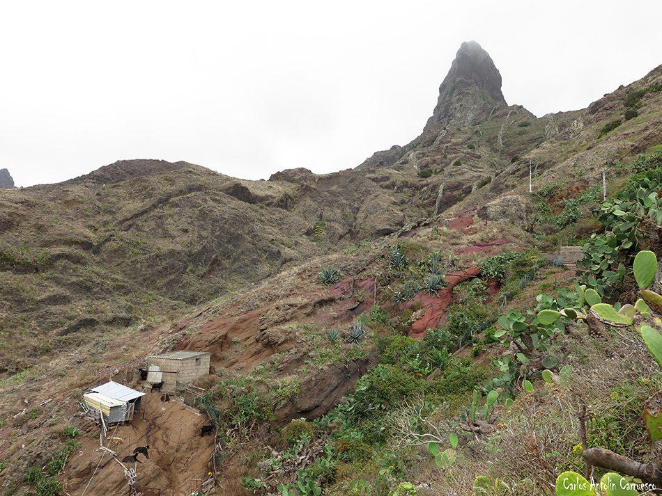 Afur - Anaga - Tenerife - Roque Pai - Paez - pai - roque paez