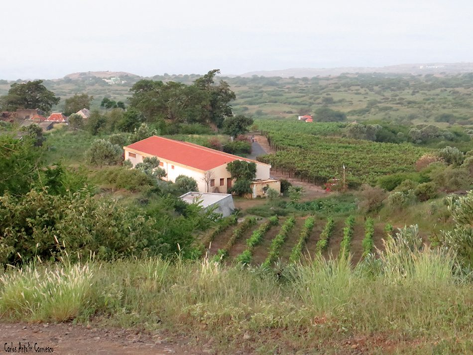 María Chaves - Fogo - Cabo Verde